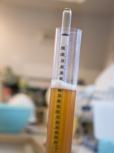 Hydrometer used to measure the specific gravity of wine and beer