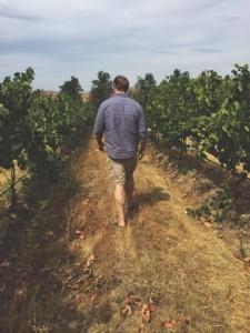 wa state_jeremey in vineyard2