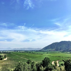 ViewfromClosAlpataWinery_Colchagua_preview.jpeg