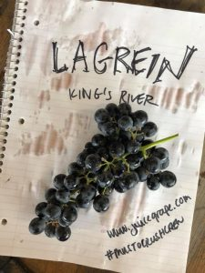 Lagrein grape_Musto Wine Grape_Winemaking_Winemaker_Home Winemaking_How to Make Wine