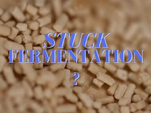 stuck wine fermentation-how to make wine-musto wine grape