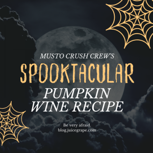 pumpkin-pumpkin wine-winemaking-fall-fall wine-fall winemaking-musto wine grape-recipe-winemaking recipe-wine recipe