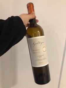 chilean carmenere-winemaking-musto wine grape