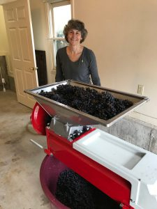 winemaker bootcamp-winemaking-home winemaking-how to make wine-musto wine grape-winemaker bootcamp testimonial